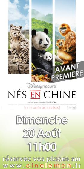 NES EN CHINE