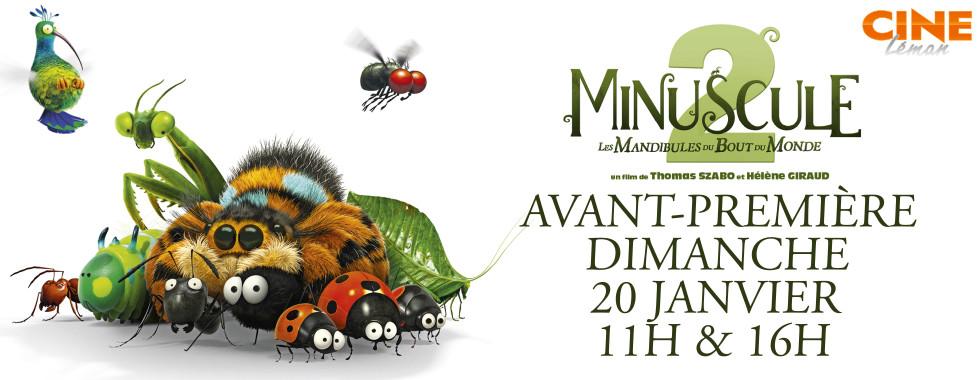 Photo du film Minuscule 2 - Les Mandibules du Bout du Monde